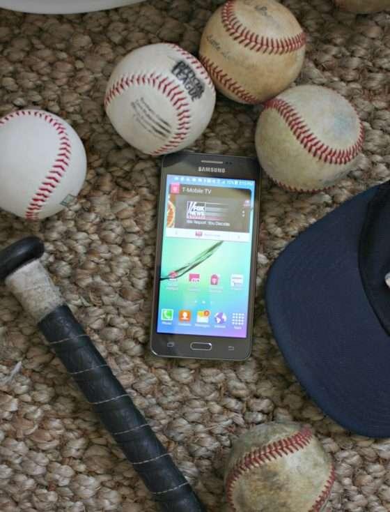 baseball burlap