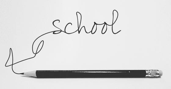 child's education, education, study, studying