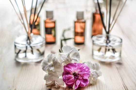 essential oils for bugs