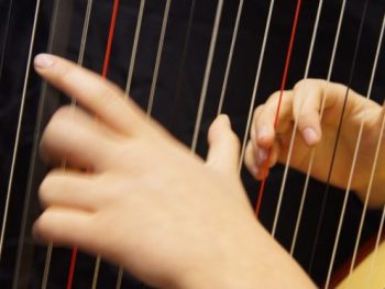 harp instrument