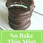 No Bake Thin Mint Cookies