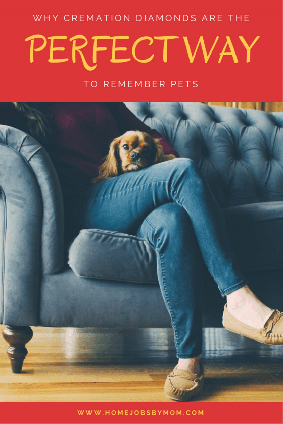 Why Cremation Diamonds Are the Perfect Way to Remember Pets