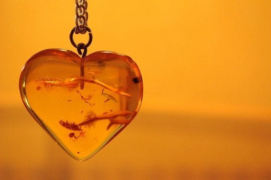 baltic amber, baltic amber benefits, baltic amber uses, parenting, baltic amber facts