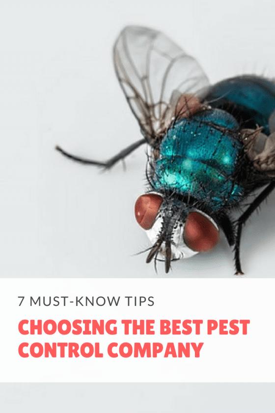 pest control, pest control company, pest control service, pests