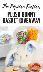 The Popcorn Factory Plush Bunny Basket Giveaway  (3 Winners, $35 ARV Each!!)