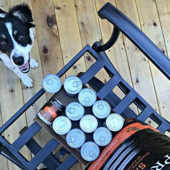 puppy, puppies, training a puppy, reward marker, purina, tractor supply, dogs, dog