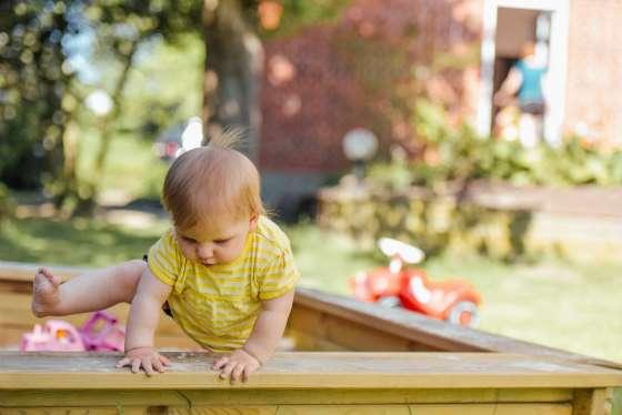 Family-Friendly Backyard, backyard ideas