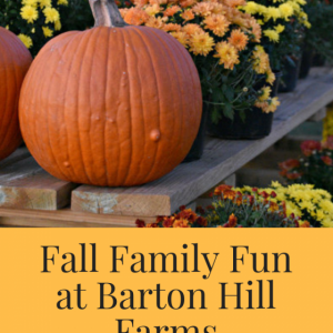 Fall Family Fun at Barton Hill Farms