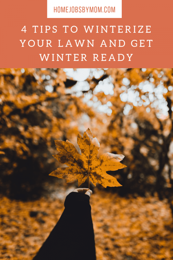 winterize lawn, winter lawn care