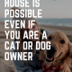 A Clean House is Possible Even if you are a Cat or Dog Owner