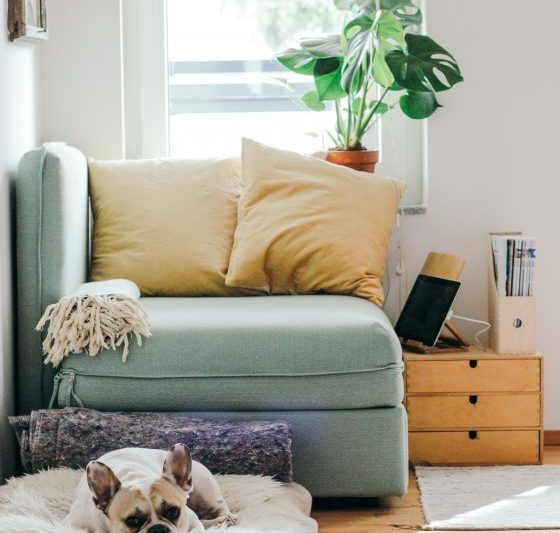 6 Ways To Make Furniture Disposal Happen Quick Home Jobs By Mom
