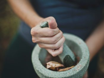 The Most Beneficial Herbs You Should Know