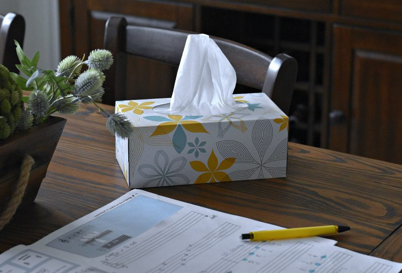 Member's Mark Brand 2-ply Facial Tissue