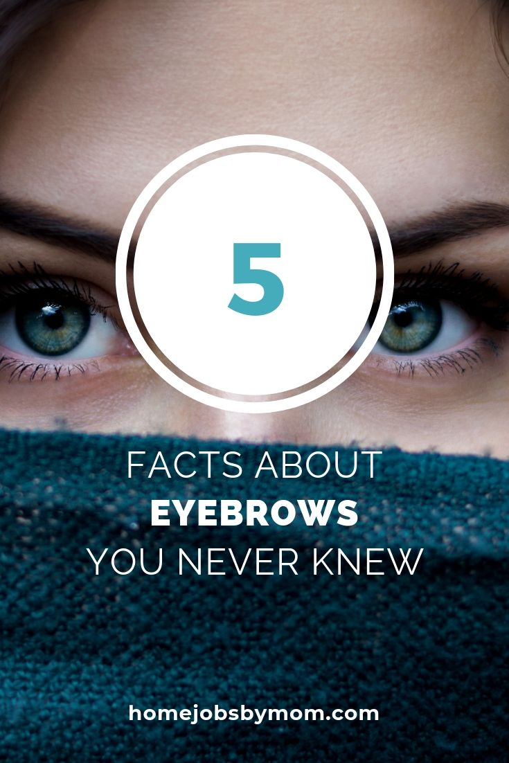5 Facts about Eyebrows You Never Knew