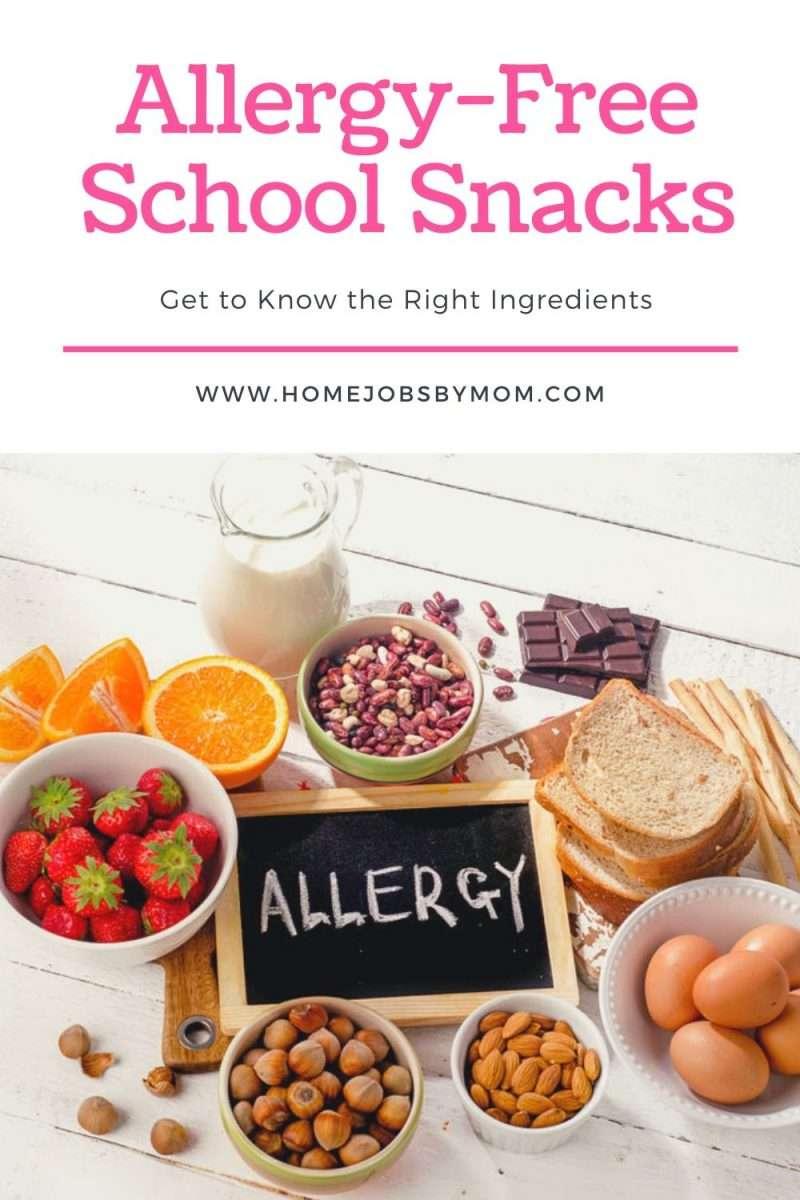 Allergy-Free School Snacks