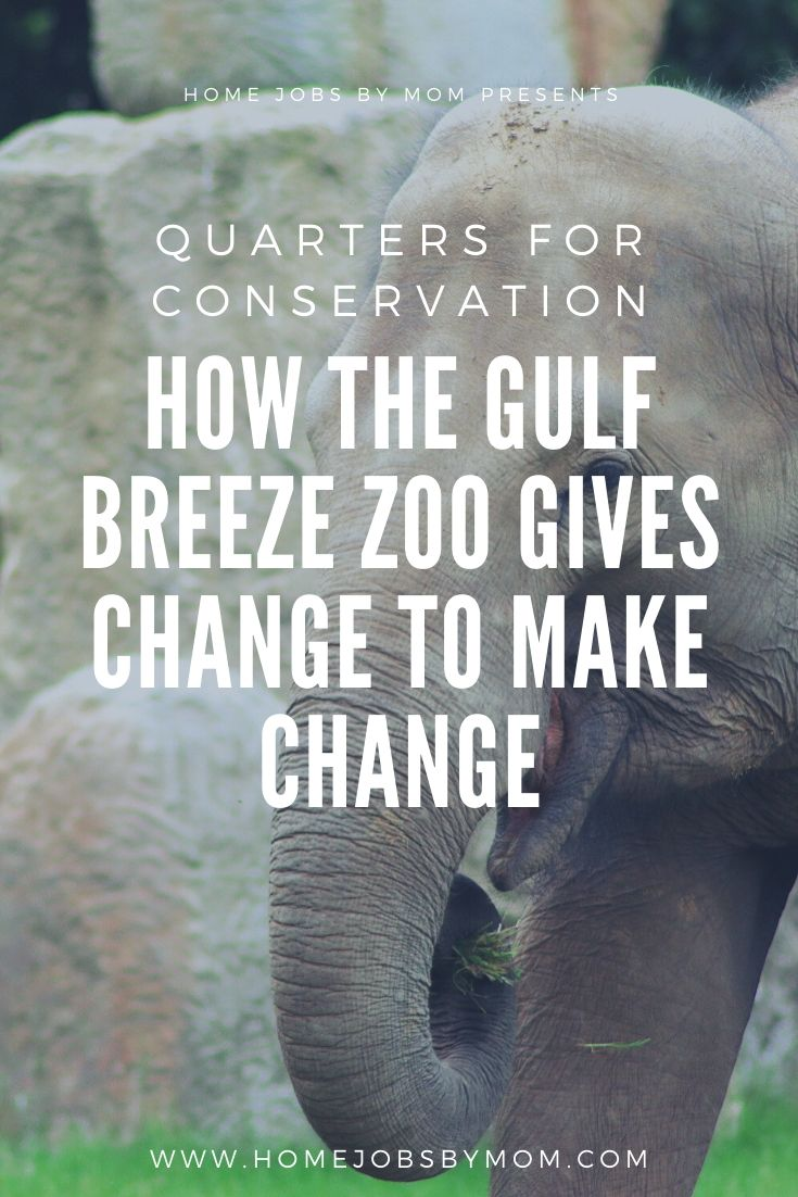 How the Gulf Breeze Zoo Gives Change to Make Change