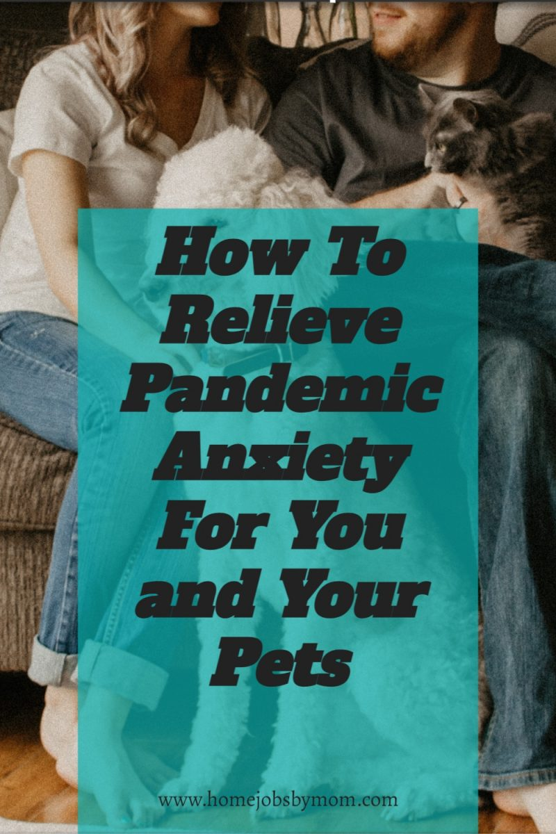 How-To-Relieve-Pandemic-Anxiety-For-You-and-Your-Pets