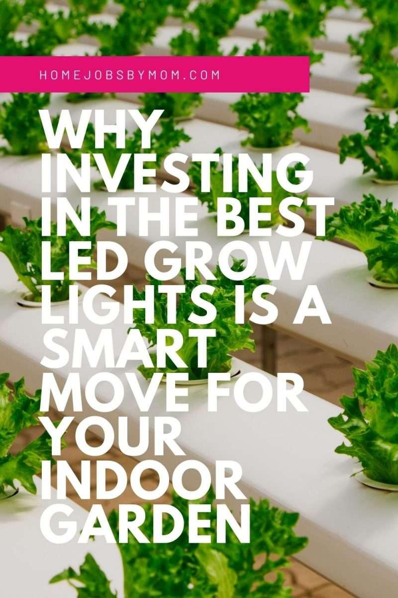 How Led Grow Lights Can Benefit Your Indoor Garden