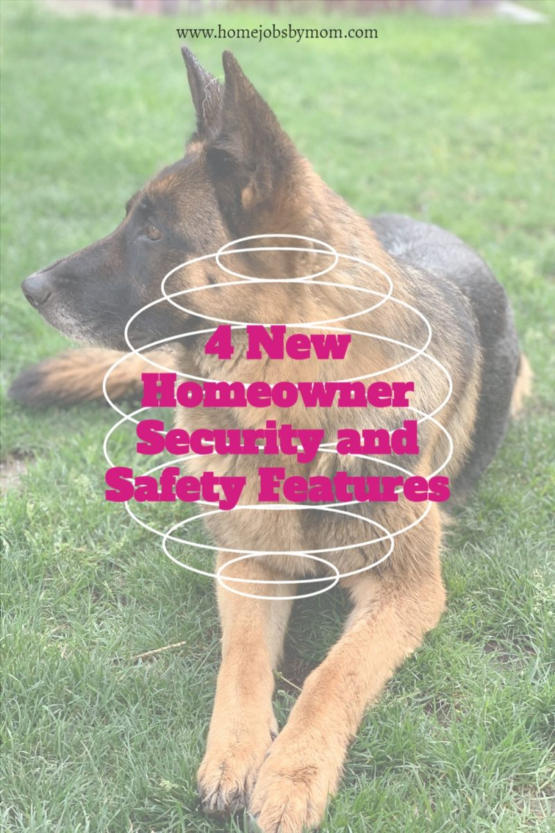 4-New-Homeowner-Security-and-Safety-Features