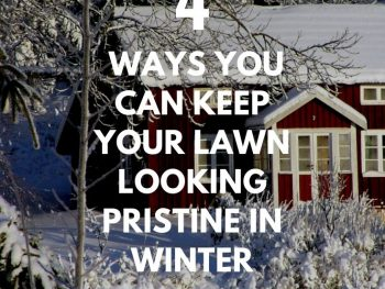 4 Frequently Overlooked Ways You Can Keep Your Lawn Looking Pristine in Winter