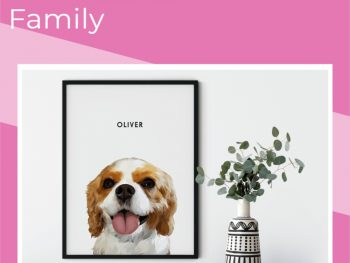 Why-Pets-Should-Be-Considered-Family