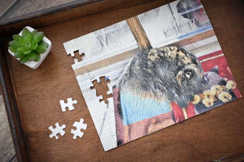 pet memorial puzzle