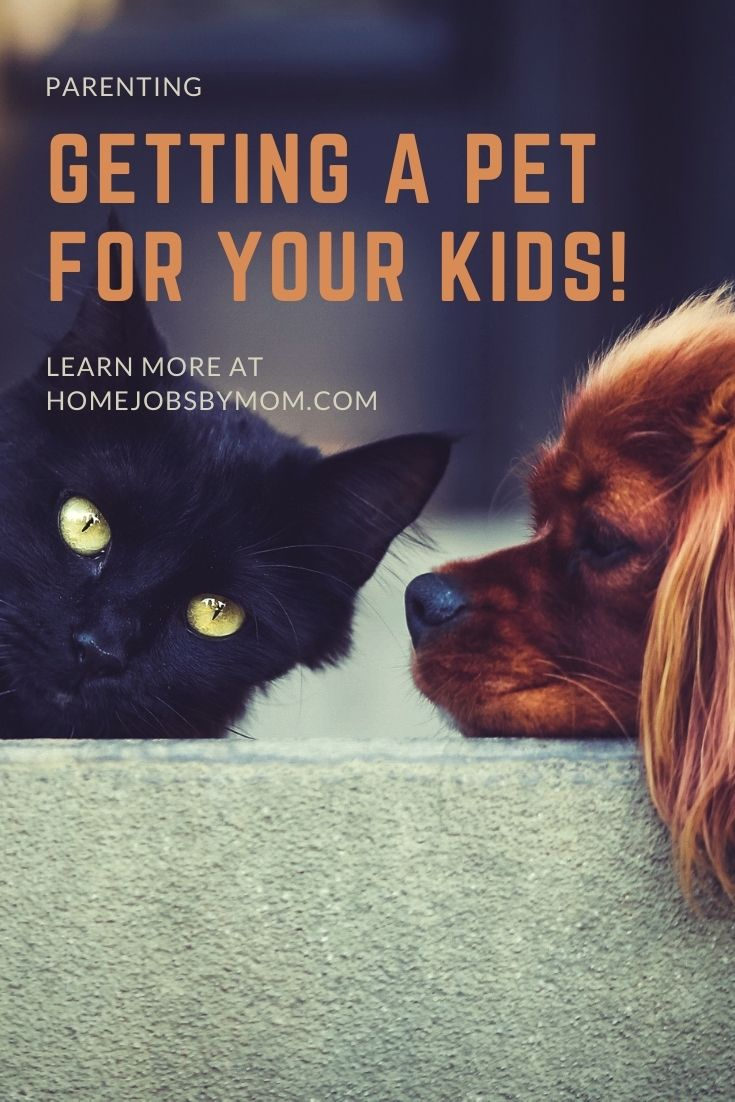 Why Getting a Pet for Your Kids is a Great Idea