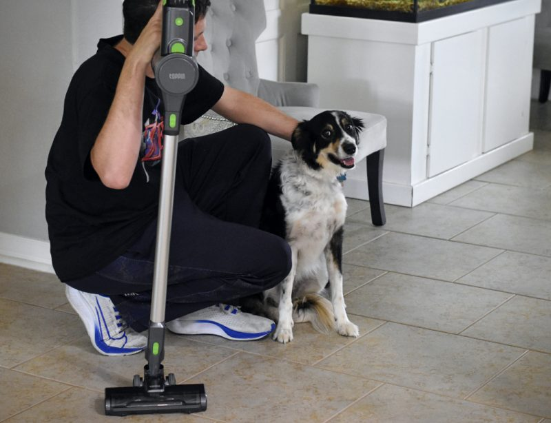 Clever Ways to Keep a Pet Filled Home Clean