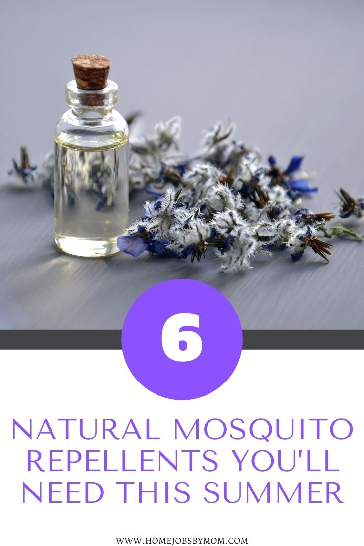 6 Natural Mosquito Repellents You'll Need This Summer