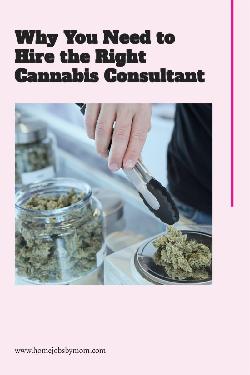 Why-You-Need-to-Hire-the-Right-Cannabis-Consultant