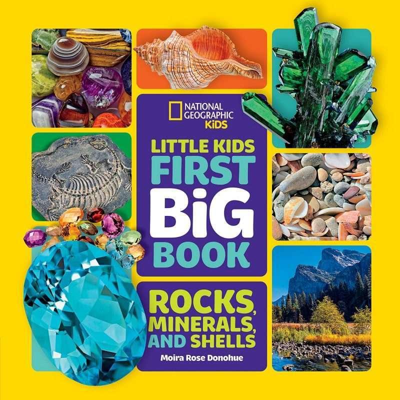 Little Kids First Big Book of Rocks, Minerals & Shells