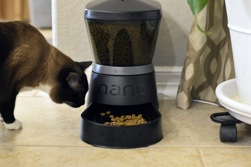 Best Christmas Gifts For Pet Owners #petmateFYI #Ad #petmate #gamma2