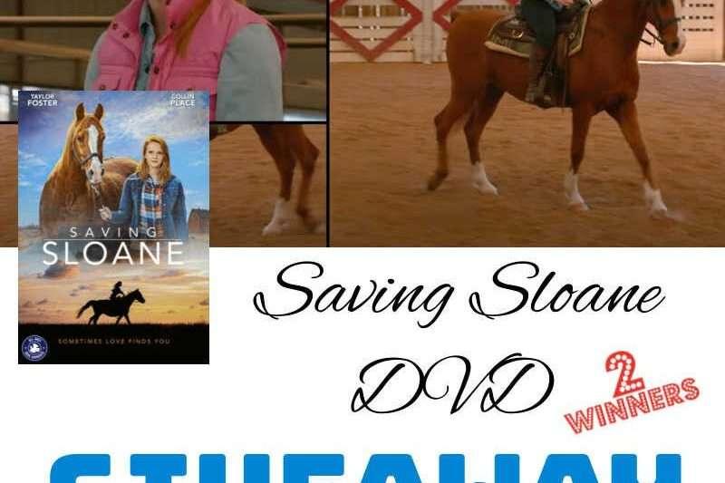 horse dvd